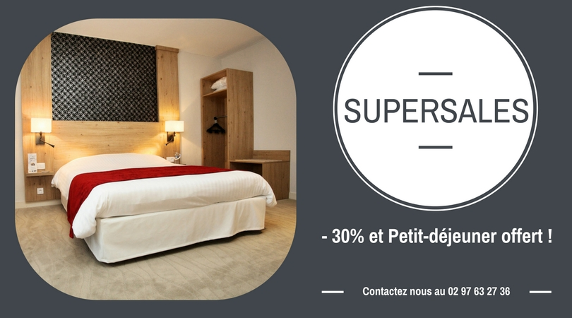hotel pas cher vannes grace a nos supersales kyriad. Black Bedroom Furniture Sets. Home Design Ideas